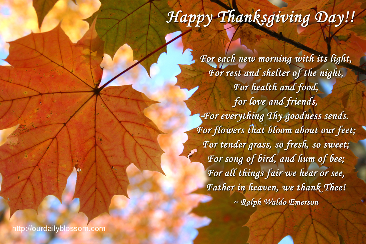 Superieur Happy Thanksgiving Quotes And Sayings