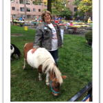 A chance to have a pony